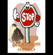 Борьба и уничтожение крыс в Алматы и Алматинской области