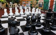Шахматы парковые (напольные,  уличные,  гигантские).